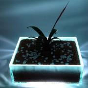 Glasblumenkasten2 mit LED Beleutung